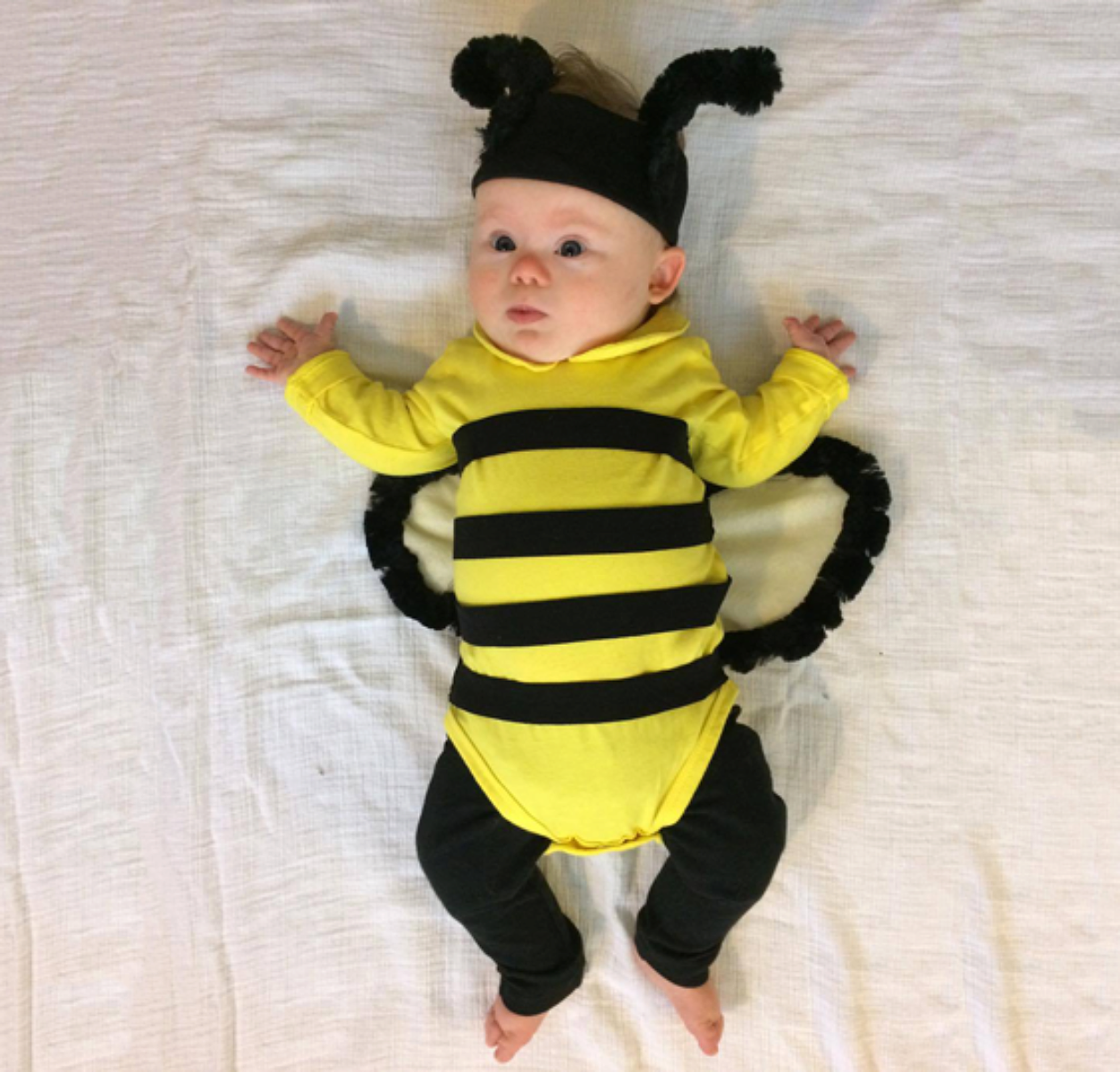 No sew diy kids and baby costumes primary no sew diy baby bumblebee baby costume primary solutioingenieria Choice Image